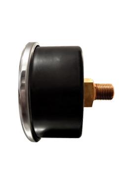 mp50in anello bordato